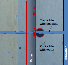 Figure 2 : Shows how water penetration on the water face prevents oxygen ingress and leads to a uniform electrical potential.